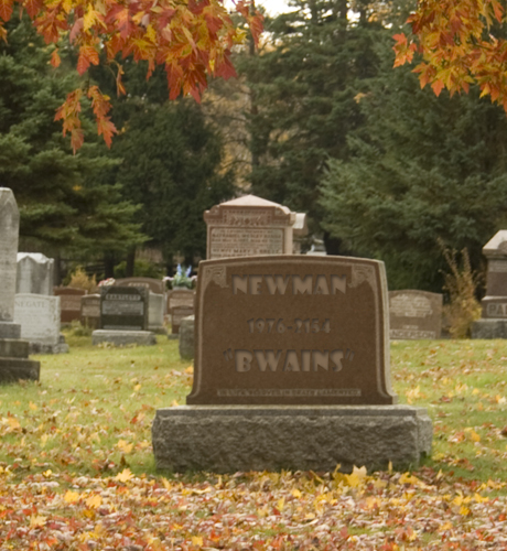vox newman bwains gravestone